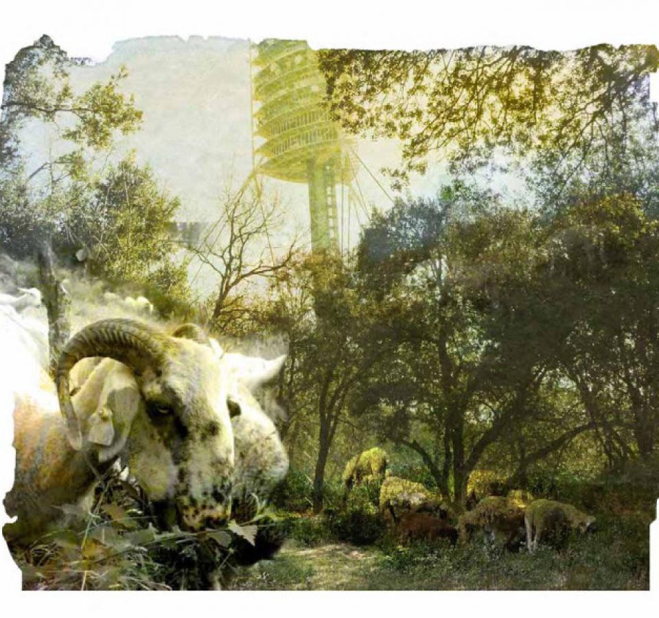 H Bouju – landscape diary-34