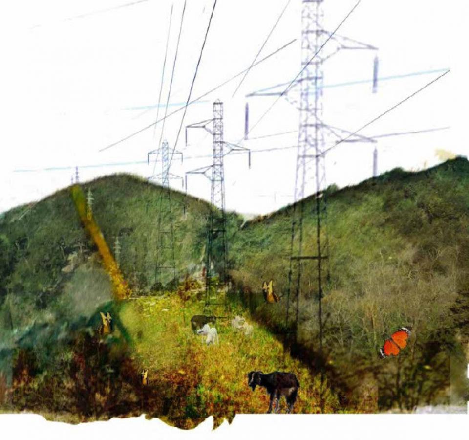 H Bouju – landscape diary-36