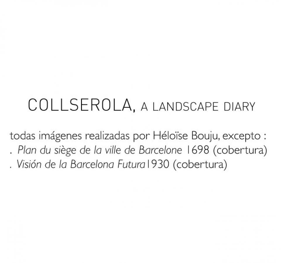 H Bouju – landscape diary-37